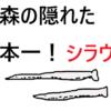 シラウオの漁獲量日本一は青森県!【小川原湖産】