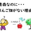 青森なのにりんご畑がない理由【どこにあるの?】