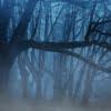 パニック症の原因や対処法【急に襲い掛かる恐怖感】