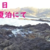 春の夏泊半島でカレイ釣り!!【今年初釣りの結果は・・・】