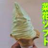 道の駅よこはまの『菜花ソフトクリーム』を食べてみた【菜の花の味は・・・】