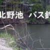 上北の野池でバスを釣る!【数年ぶりの・・・】